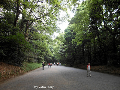The way to the meiji Jingu Shrine In Tokyo