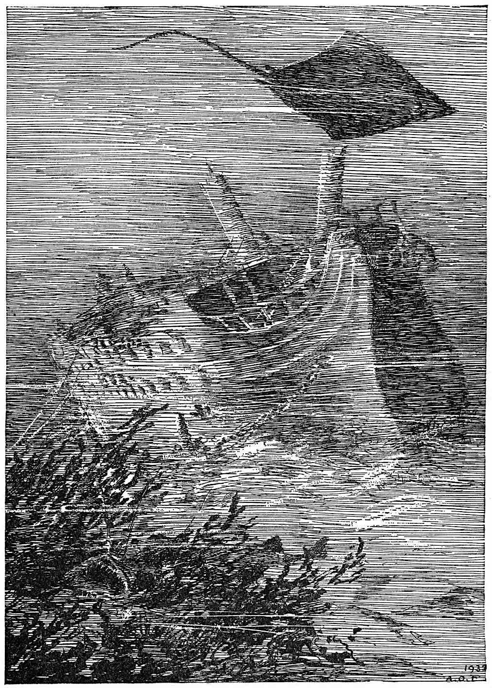 Anton Otto Fischer 1939, a sunken ship wreck
