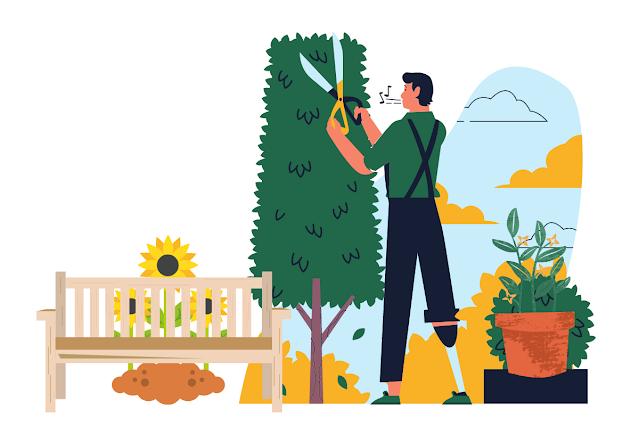Creative idea to make your garden wonderful
