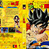 Capas Dragon Ball Z Vol. 1-37