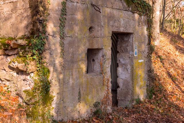 Abri installé à contrepente sur la crête menant au château du Schwarzenbourg