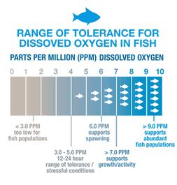 Rentang toleransi DO untuk produksi ikan