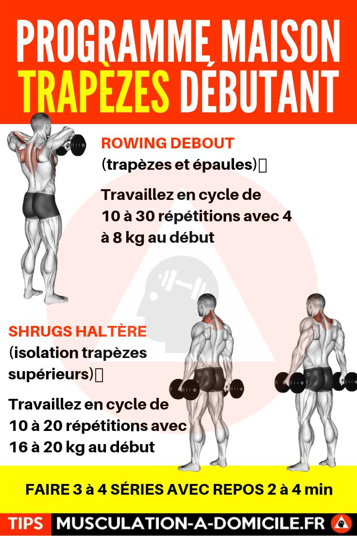 Programme Musculation Debutant Poids De Corps Et Haltere