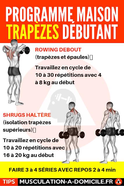 musculation à domicile programme musculation débutant poids du corps et haltère trapèzes dorsaux