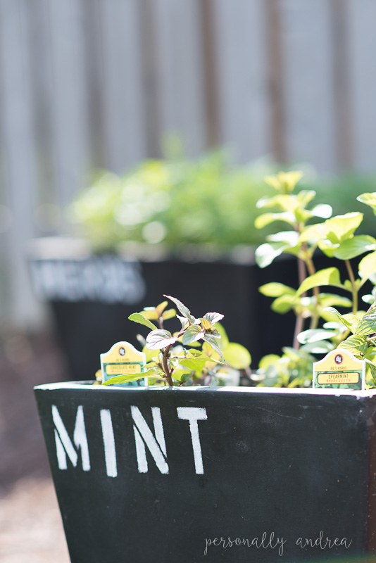Chalkboard Style Garden Containers