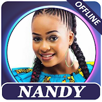 Nandy songs offline Apk free Download for Android