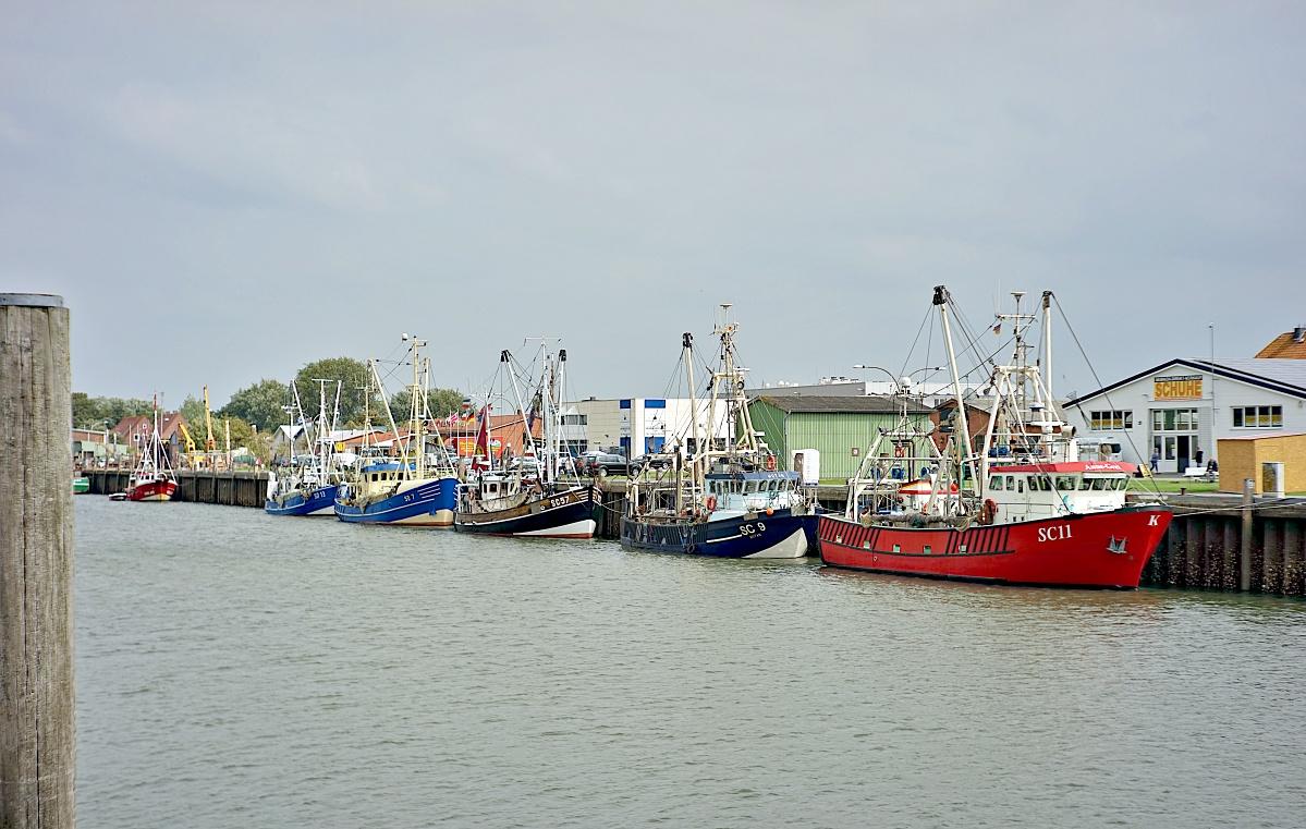 Im Büsumer Hafen (3)