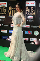 Sonal Chauhan in a stonework Floor Length Silver Designer Gown at IIFA Utsavam Awards March 2017 030.JPG