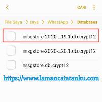 menghapus file database whatsapp untuk mengatasi penyimpanan internal penuh