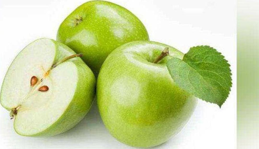 Ready! bibit apel manalagi benih pohon tanaman buah okulasi bisa untuk tabulampot taman Kota Surabaya #bibit buah genjah murah