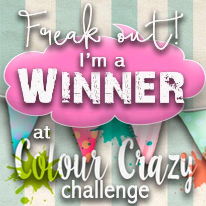 Winner #23   Colour crazy