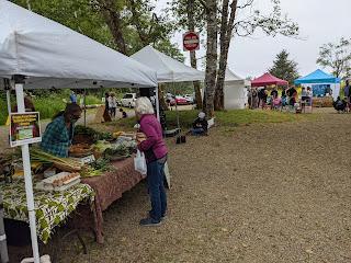 Scene of Neskowin Farmers Market.