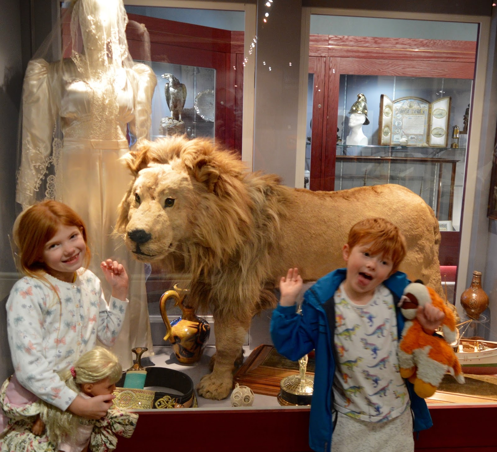 15+ Things To Do In South Shields - Lion at South Shields Museum l
