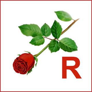 r-image