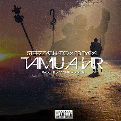 Steezzy Chato x FB Tyga - Tamu a Vir (Prod. By WB Records)