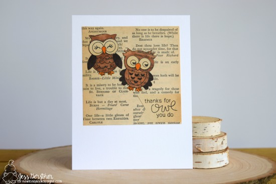 Owl Book Card by Jess Crafts for Newton's Nook Designs What a Hoot