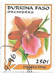 Selo Orquídea Miltonia