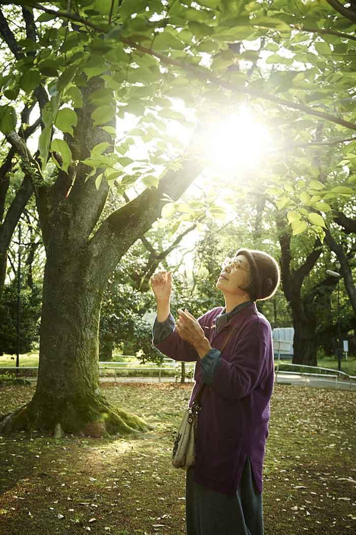 Tokue observant le feuillage d'un arbre