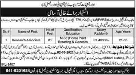 Ayub Agriculture Research Institute Job 2021 For Research Associate