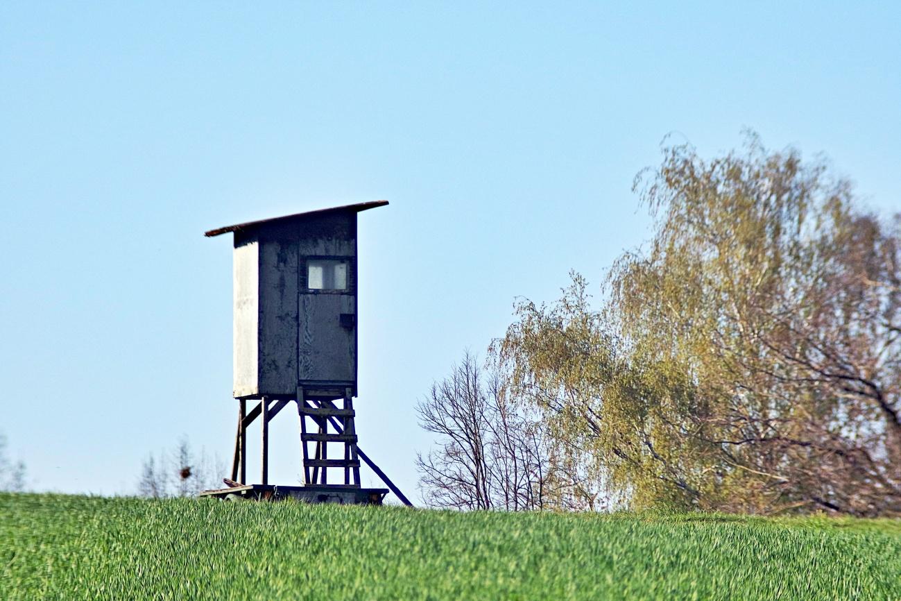 Zum Tagesabschluss — Tiny house, es lebe der Minimalismus
