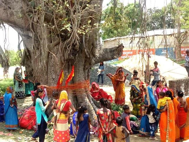 सुहागिनों ने धूमधाम से मनाई वट सावित्री पूजा