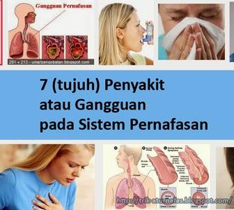 7 (tujuh) Penyakit atau Gangguan pada Sistem Pernafasan