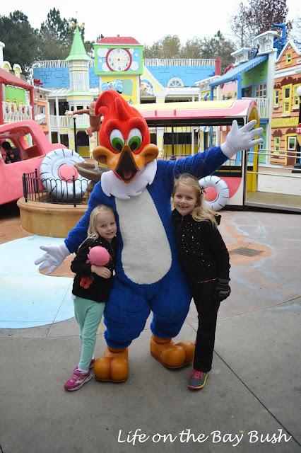 Universal Orlando Woody Woodpecker