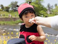 Obat Flu yang Paling Ampuh Untuk Anak Antiviru