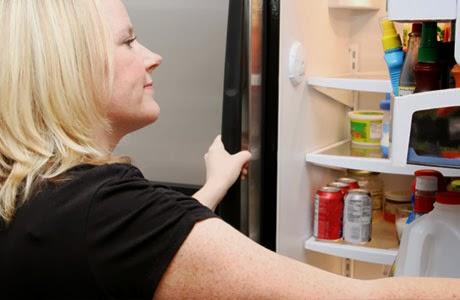 membersihkan dan merawat kulkas
