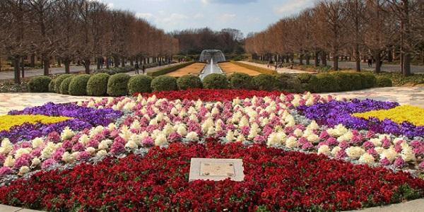 Showa Memorial Park (Tokyo)