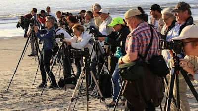 Delegates during a Landscape / Long Exposure Workshop Milnerton Beach Photo Credit Steve Williams