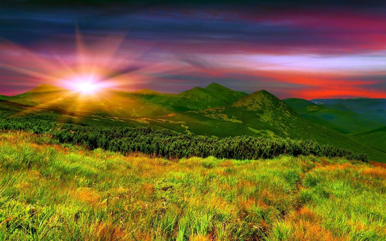 Most Beautiful Widescreen Desktop Wallpaper Collection: Beautiful Nature Wallpapers Collection