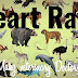 Heart Rate of Different Animals