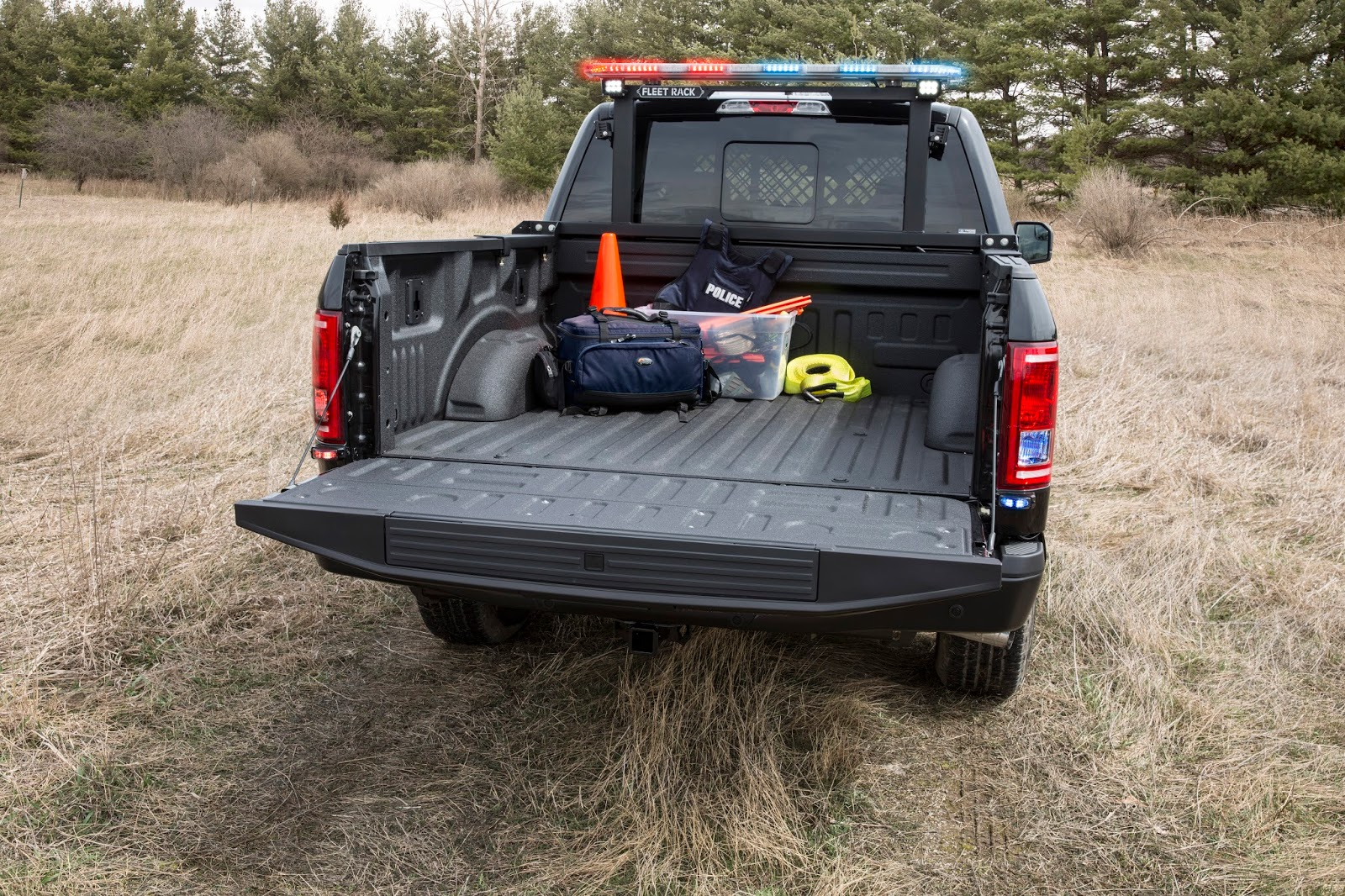 Blog: 2016 Ford F150, il hérite d39;un package Special Service