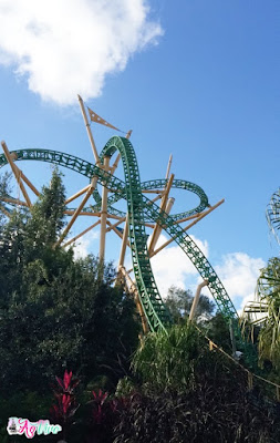 Cheetah Hunt Busch Gardens