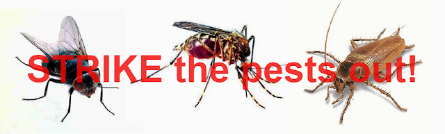 Save your day from pesky insects and safekeep the family
