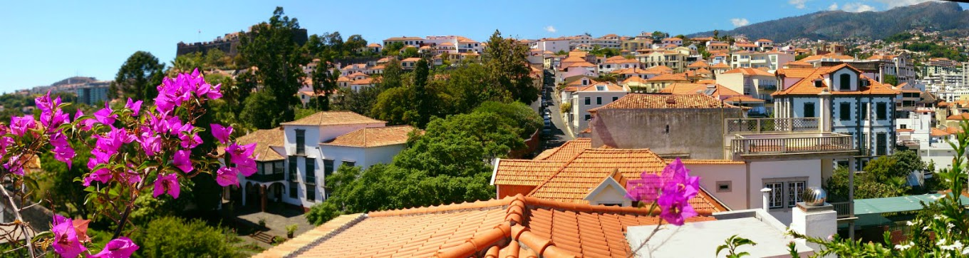 Funchal west view
