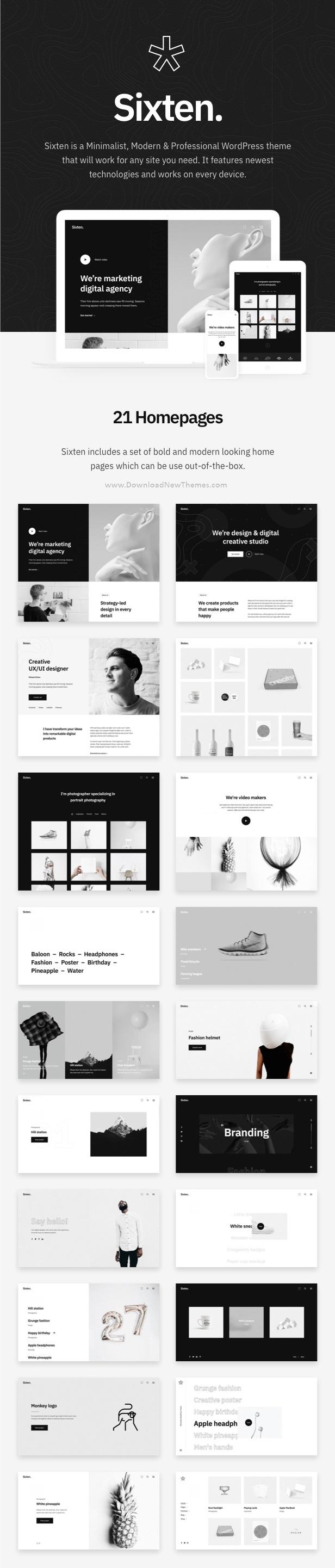 Best Minimalist Portfolio WordPress Theme