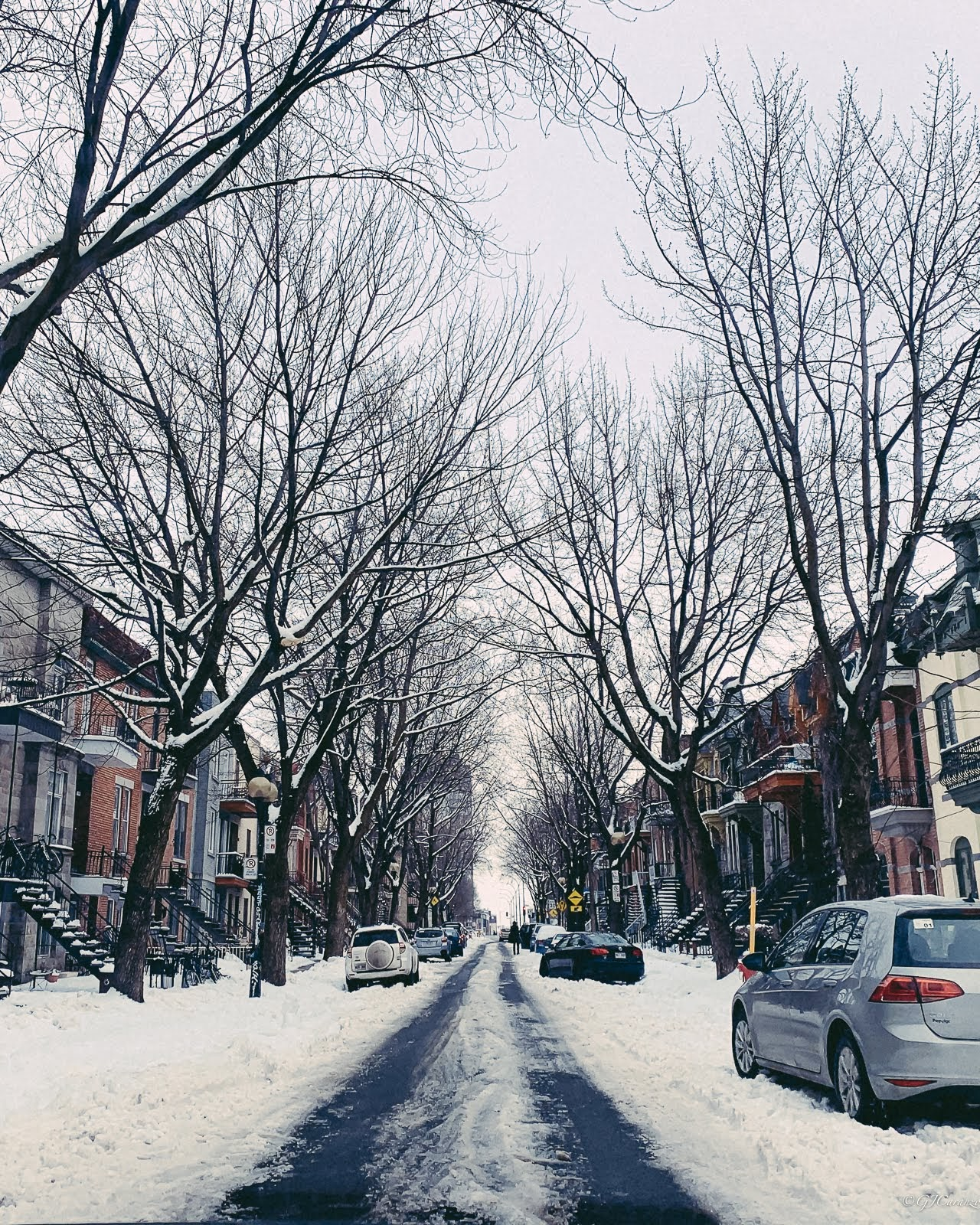 Things To Do in Montreal, Quebec, Canada in Winter