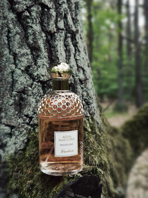 passiflora recenzja perfum guerlain