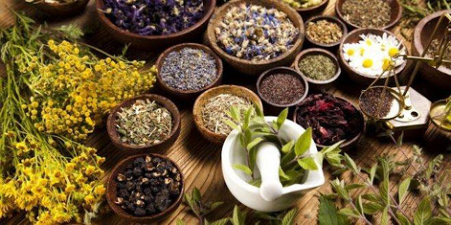 5 Best Herbs You Need To Increase Your Energy Level