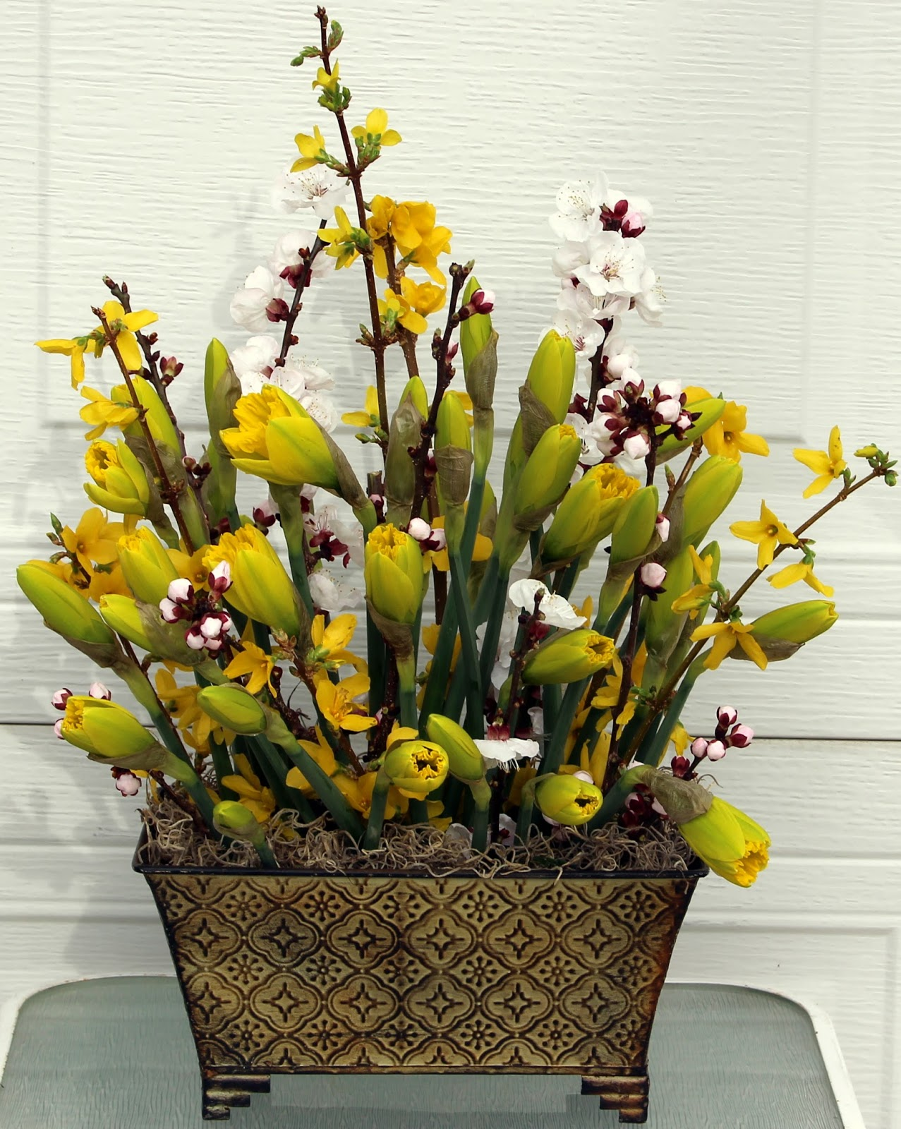 i didnt realize just how large this new variety of daffodil would be in bloom and the arrangement had far too many daffodils in it - Forsythia Arrangements