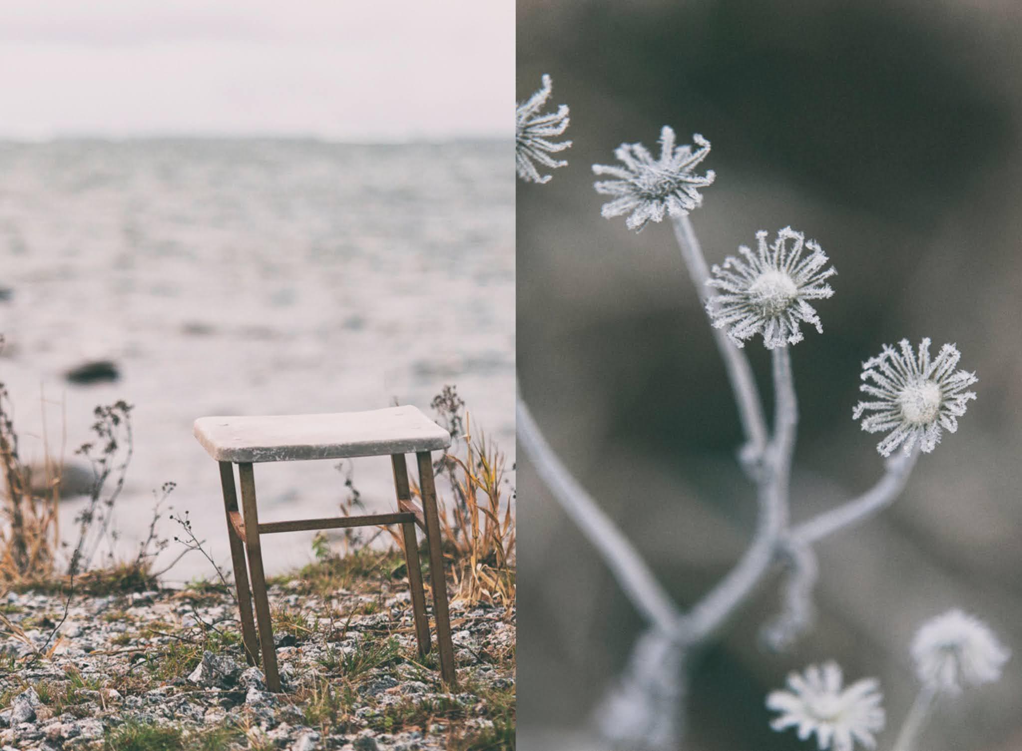 suomi, finland, visitfinland, finland, photolovers, photography, valokuvaaminen luontokuva, valokuvaaja, photographer, Frida Steiner, Visualaddictfrida, blogi, bloggari, Visualaddict, syksy, fall, autumn
