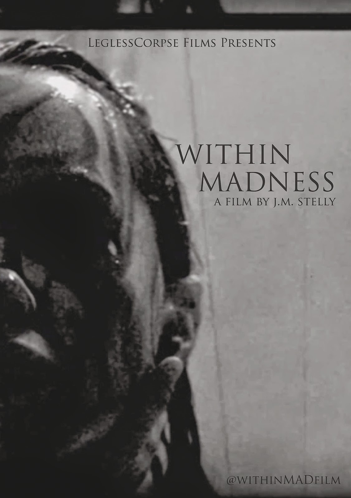 http://horrorsci-fiandmore.blogspot.com/p/within-madness-takes-us-on-journey-into.html