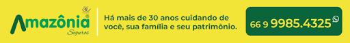 Amazônia Seguros