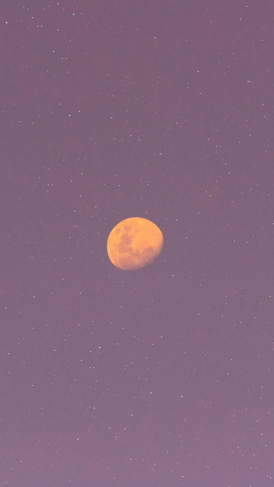 Full moon in the pink sky wallpaper