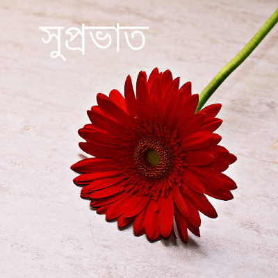 Good morning in Bengali