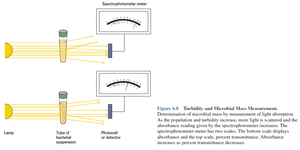 Turbidity and Microbial Mass Measurement