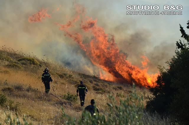 Μπαράζ εμπρησμών στο Λυγουριό - Και τέταρτη εστία πυρκαγιάς από εμπρησμό