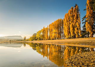 Autumn, Golden Hour, Lake Wanaka, New Zealand, Otago, Sunrise, Wanaka